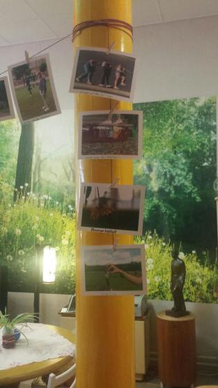 "Fotoprojekt ""Illusionen"""